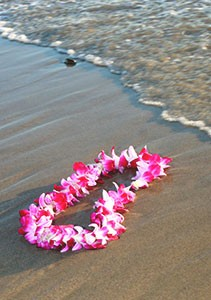 What Are Leis For?